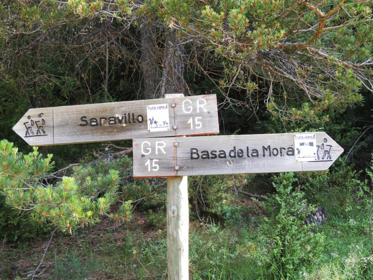 Basa-de-la-mora