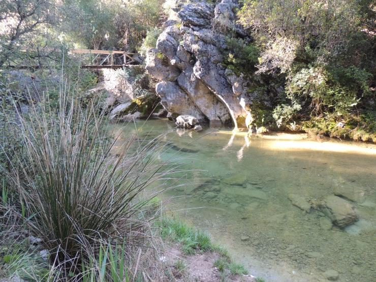 3 Rio Borosa Ganitas de andurrear