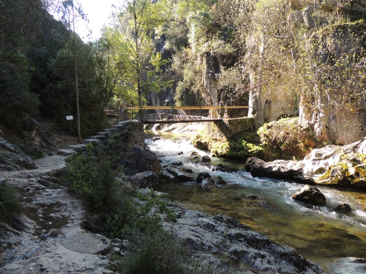 4 Rio Borosa Ganitas de andurrear